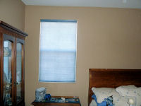 Sheer Shades and Cellular Shades